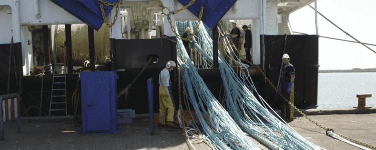 Net til erhvervsfiskeri